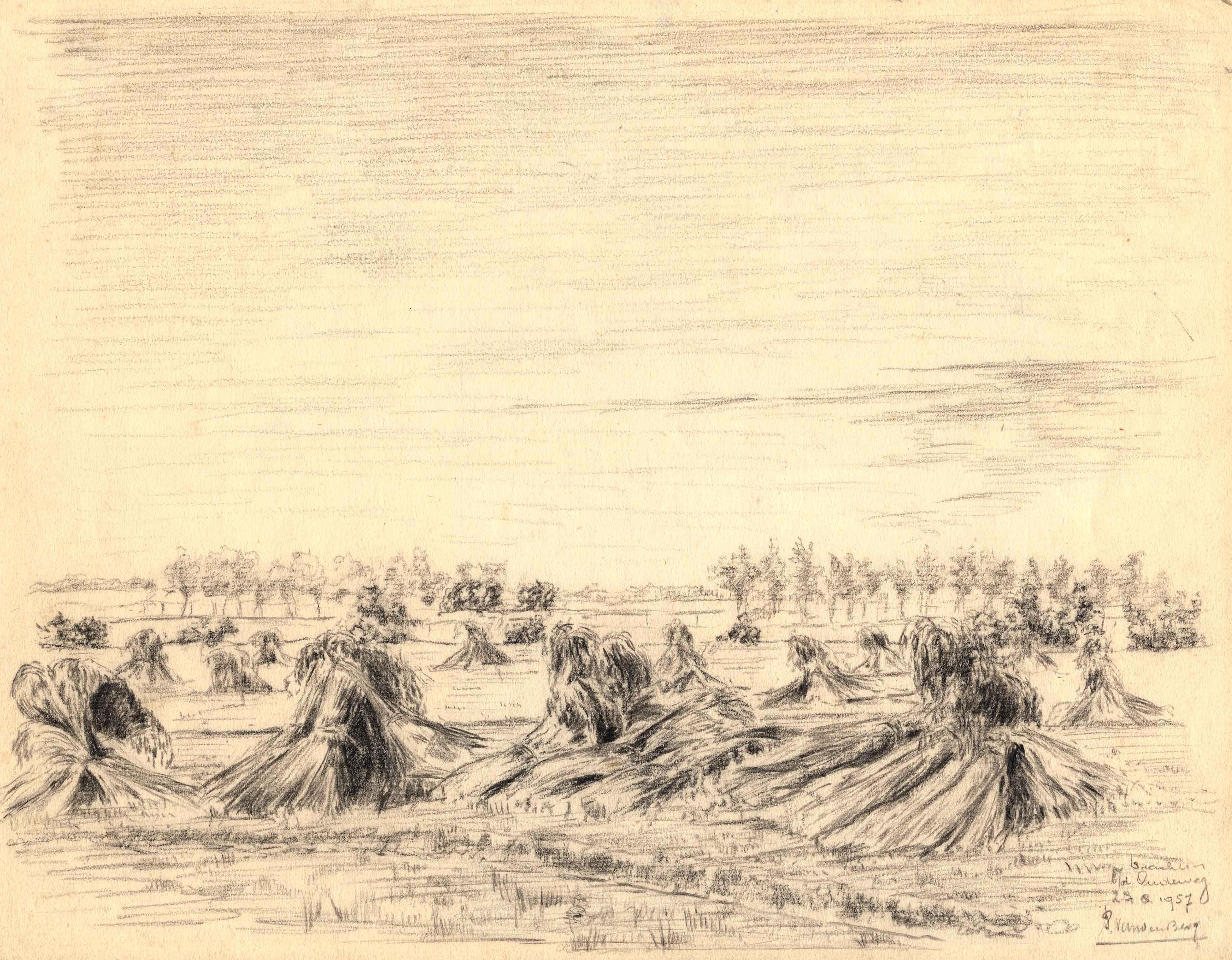 Tekening van de roggeschoven aan de Oudeweg