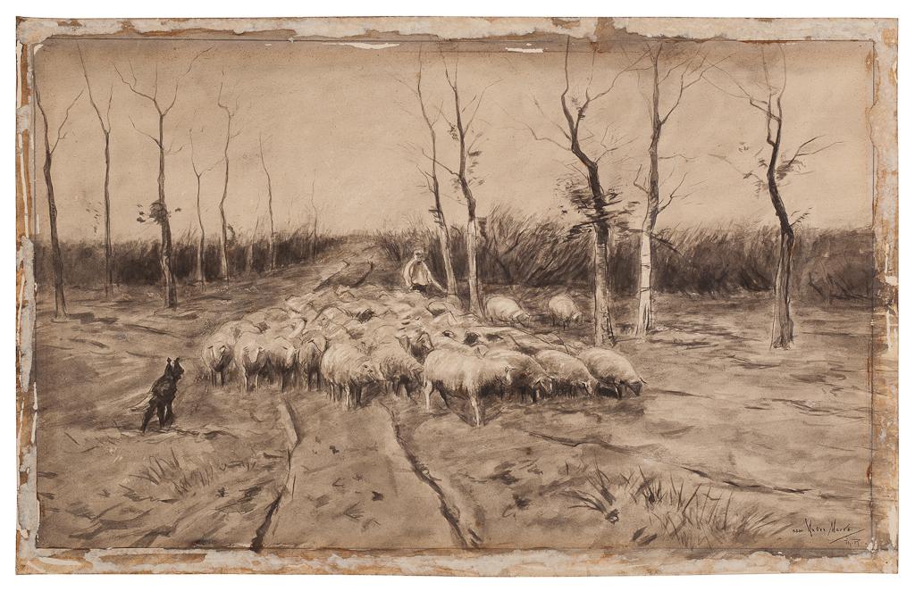 Landschap met kudde schapen