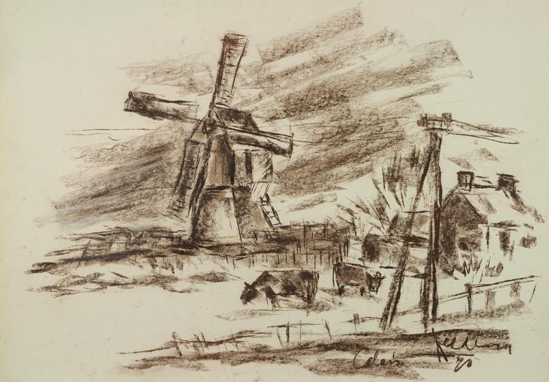 """Molen """"Calais"""", 1978"""
