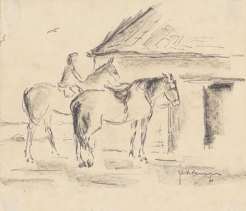 2 Paarden , 1 met ruiter