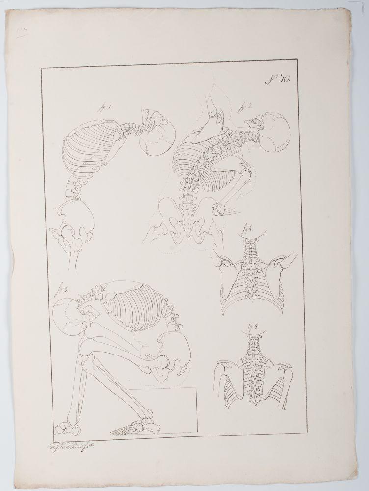 Tekenvoorbeeld van skeletten