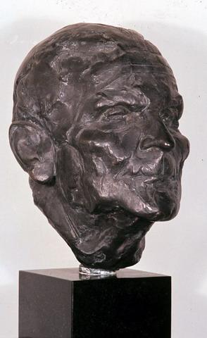 Portret D. Hannema.