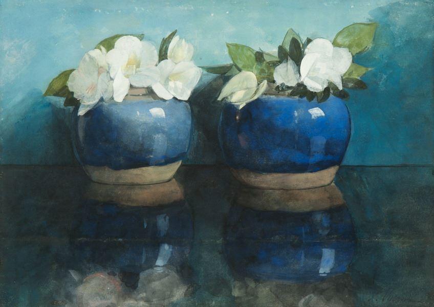 Witte azalea's in blauwe gemberpotjes.