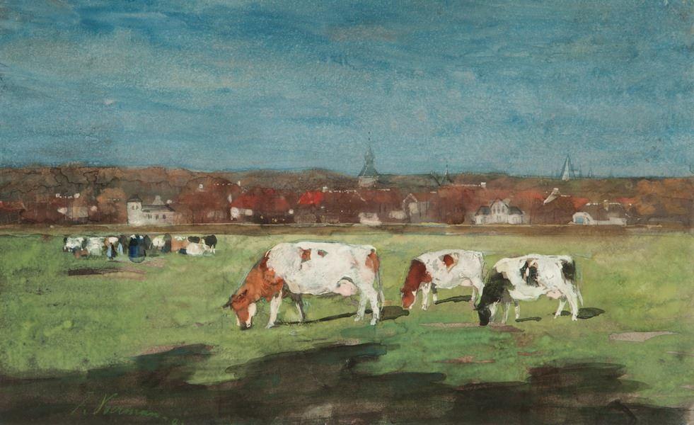Drie koeien in de wei - Hattem