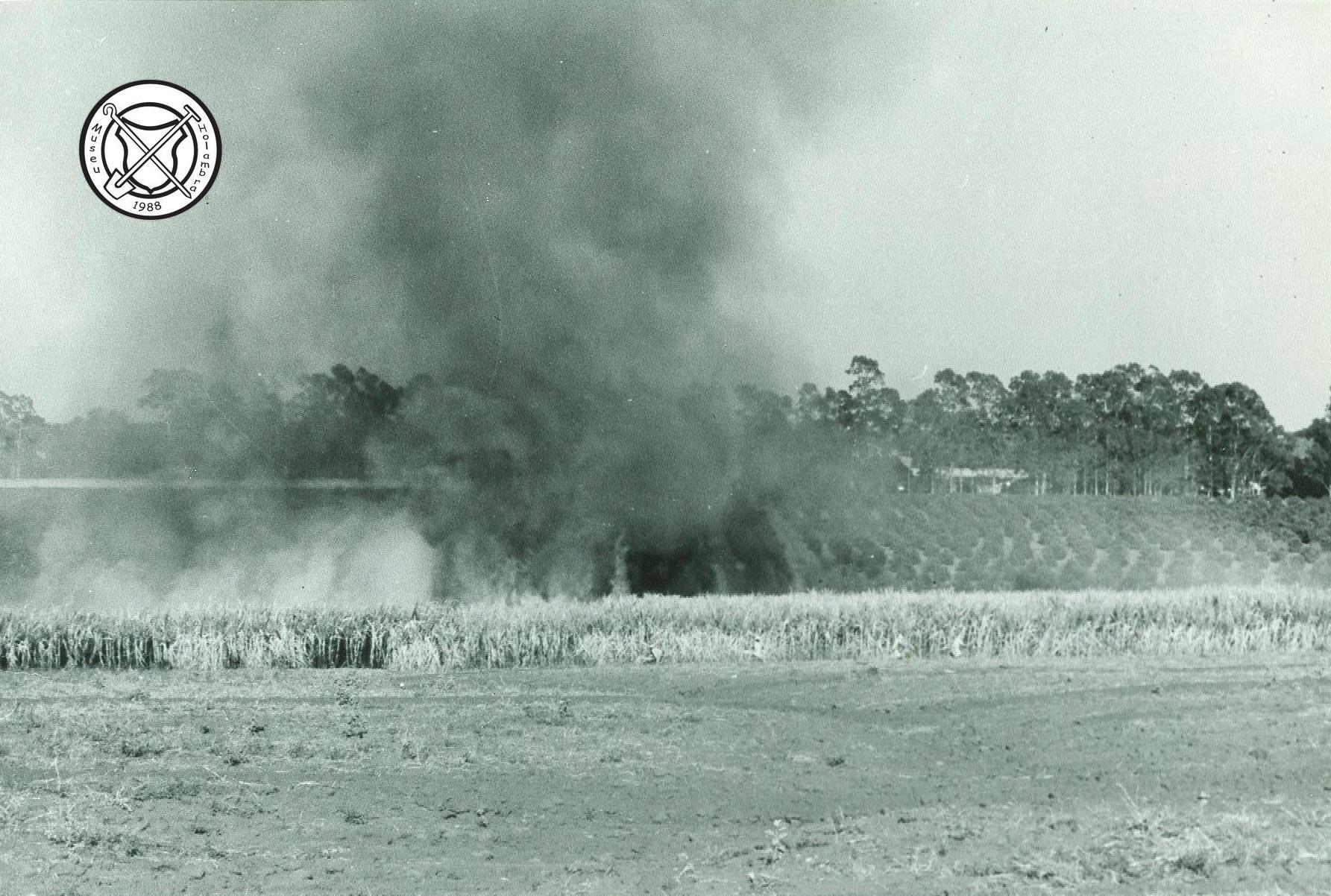 Branden van een suikerrietveld