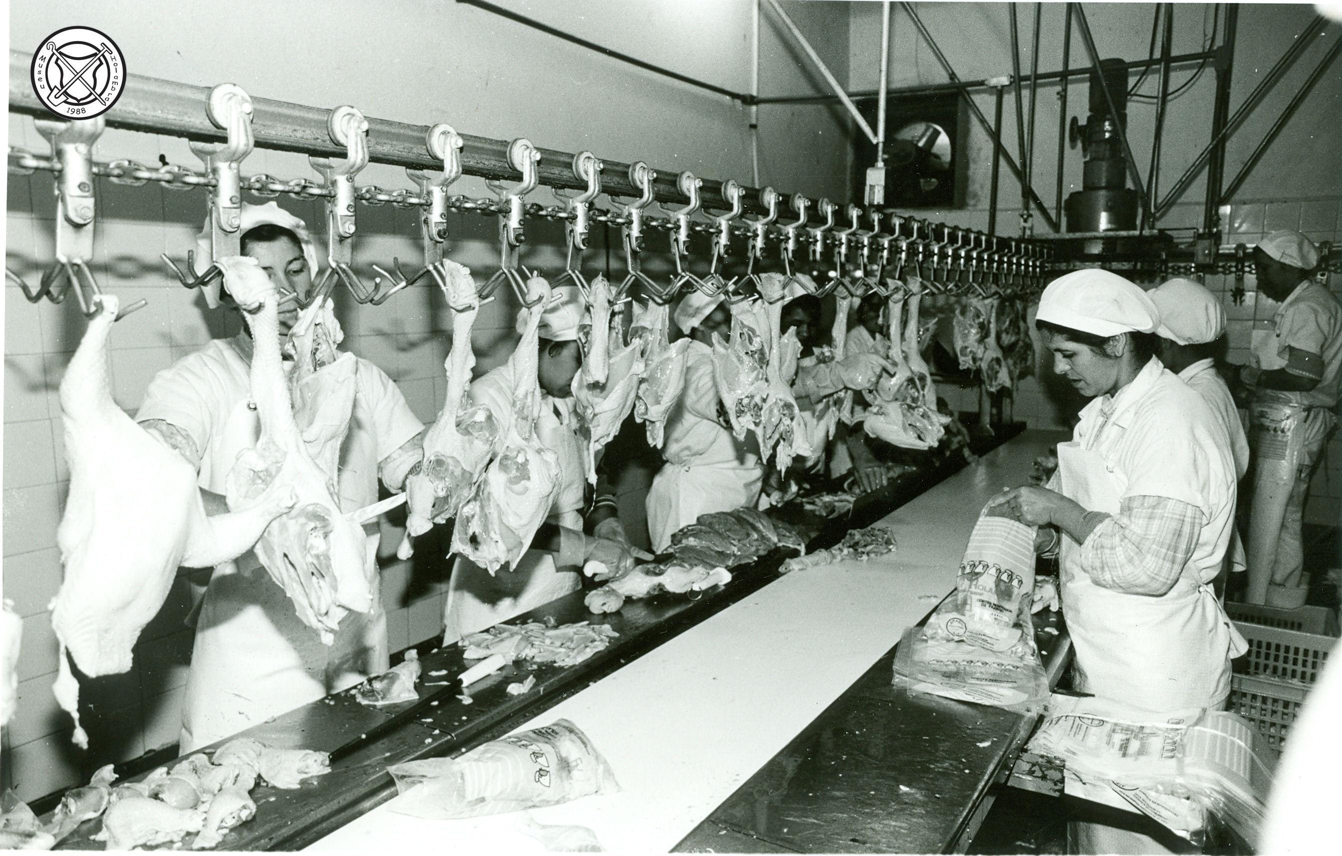 Snijafdeling van de kippenslachterij