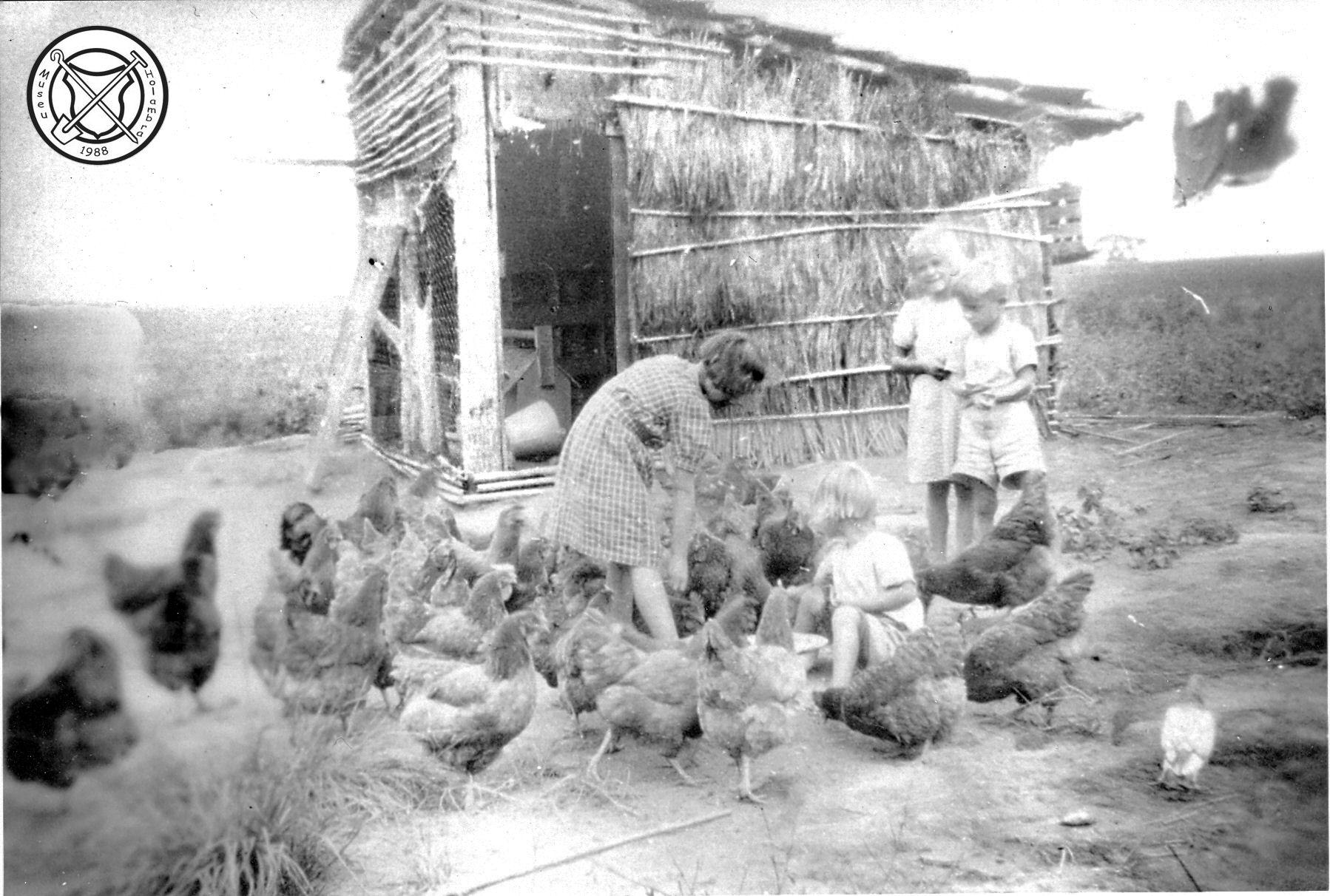 Kinderen en kippen
