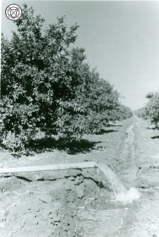 Een irrigatiekanaal in een boomgaard