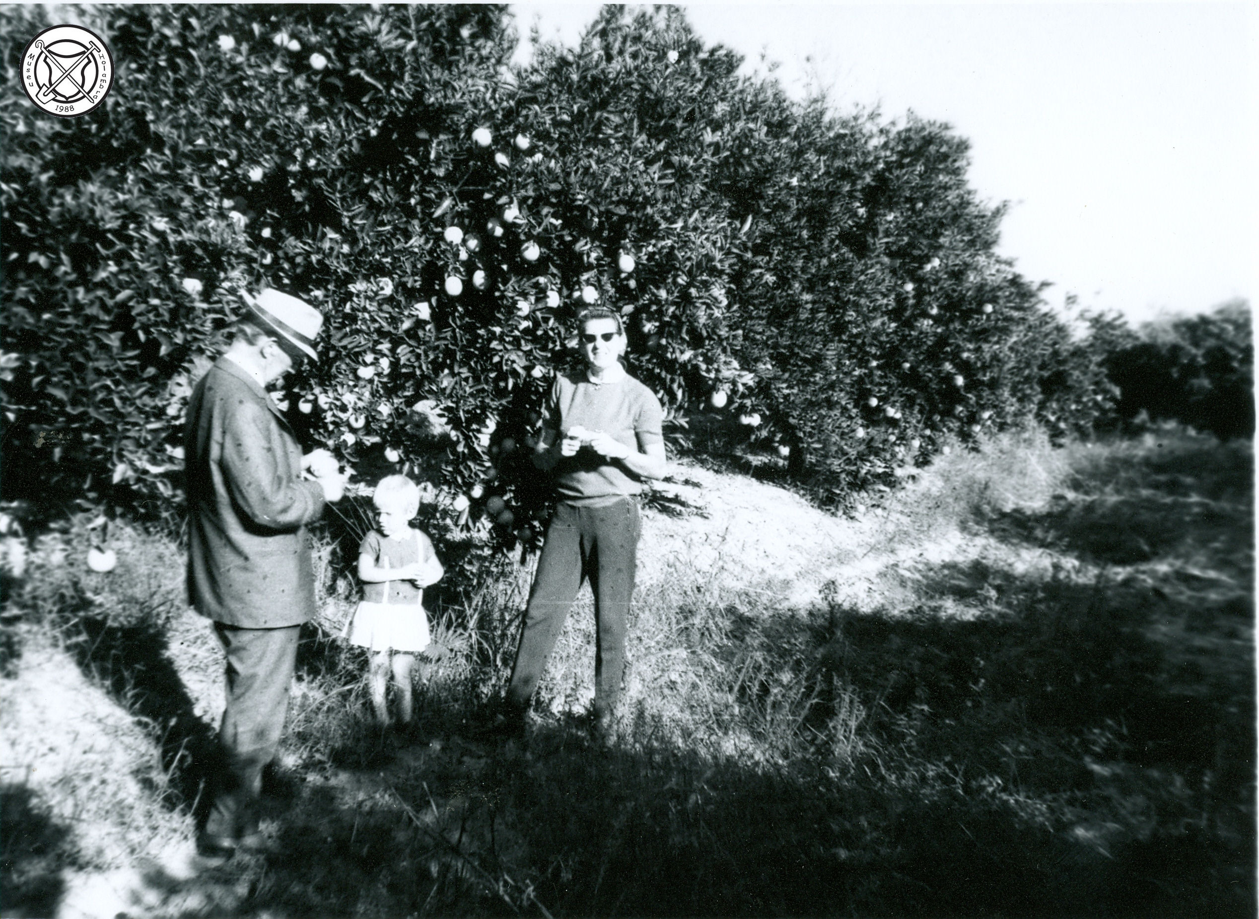 Een bezoek aan een boomgaard