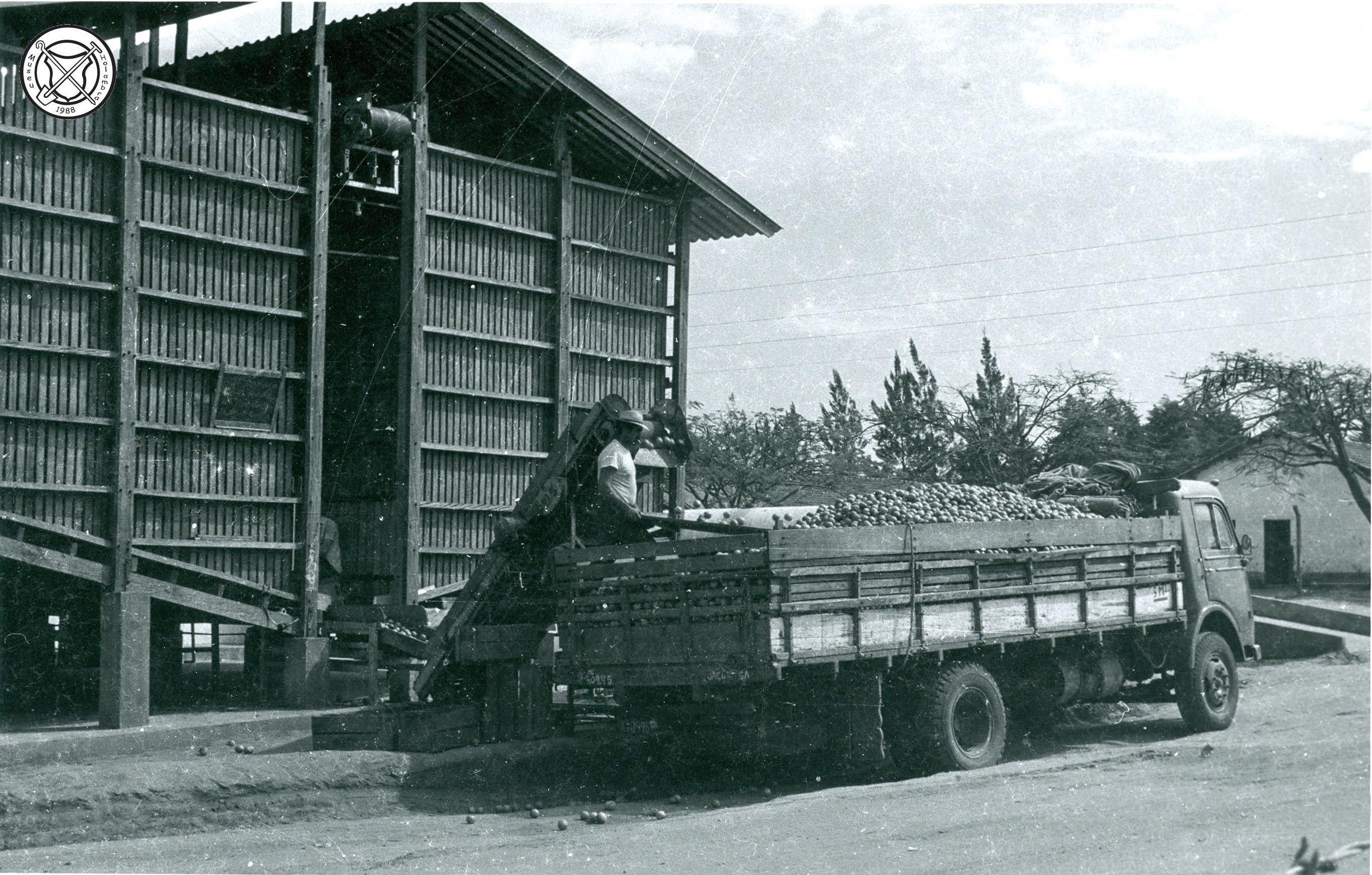 Packing house met een volgeladen vrachtwagen