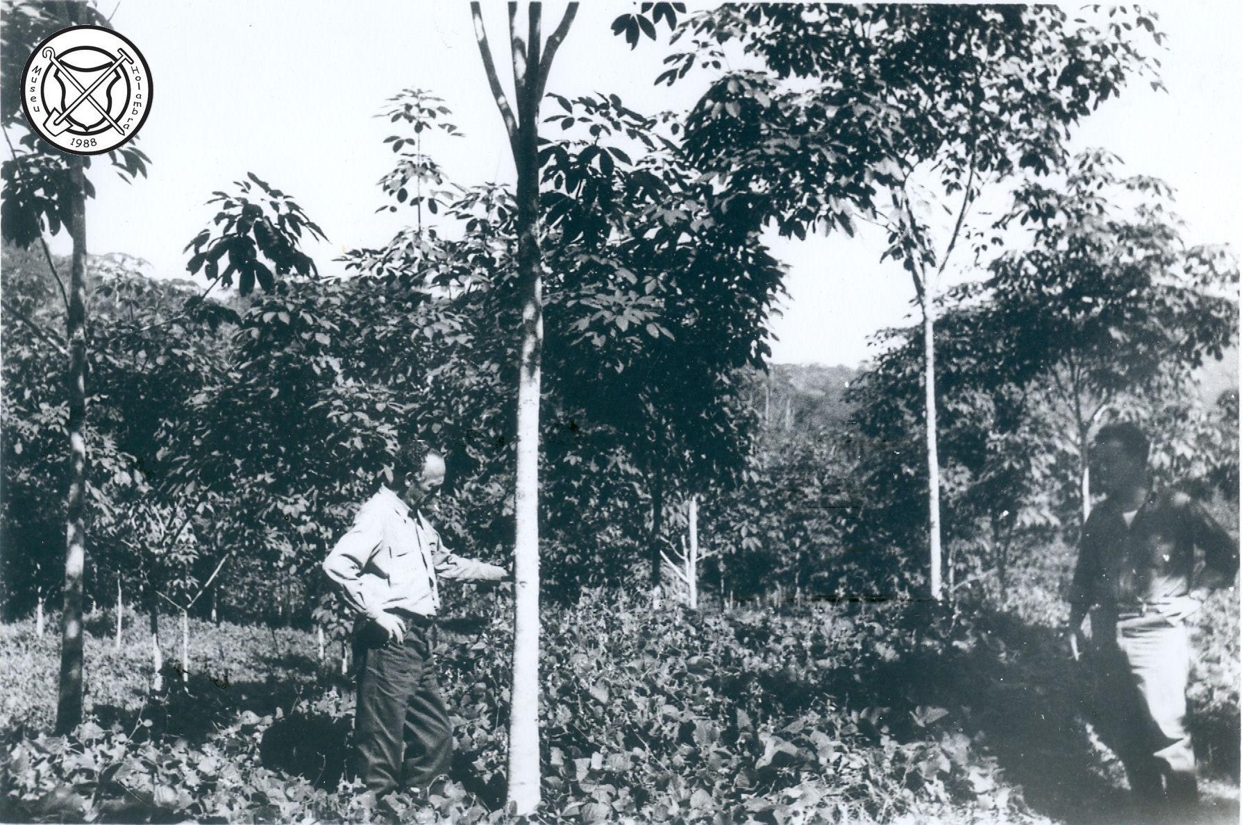 Bezoek aan een rubberplantage